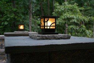 landscape lighting in a backyard