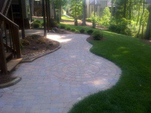 paved path in a backyard
