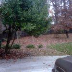 Asleigh Walk Suwanee, GA
