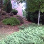 Crofton Suwanee, GA