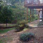 Backyard Lake Lanier