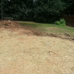 Pool Landscaping Solutions - Lakeside in Hamilton Mill, Dacula GA