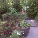 Flowery Branch Landscaping